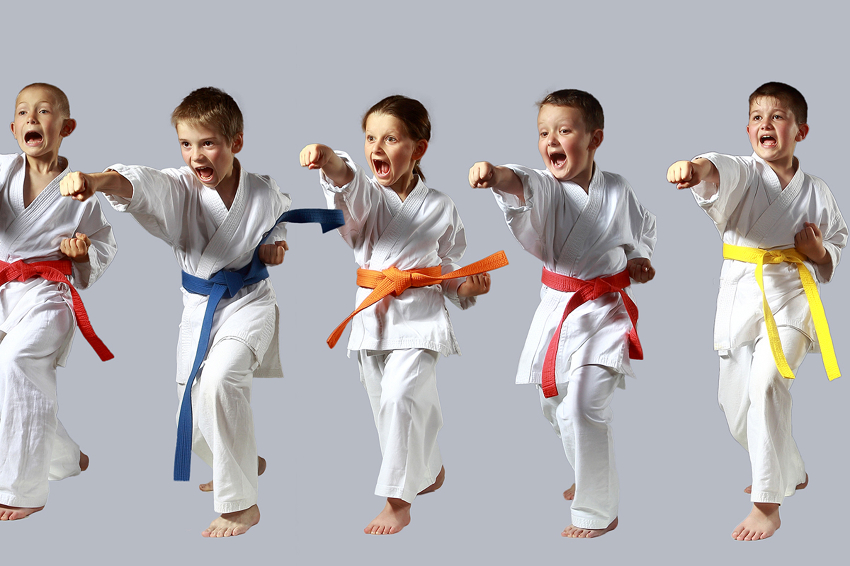 Martial Arts Class and Instructor News